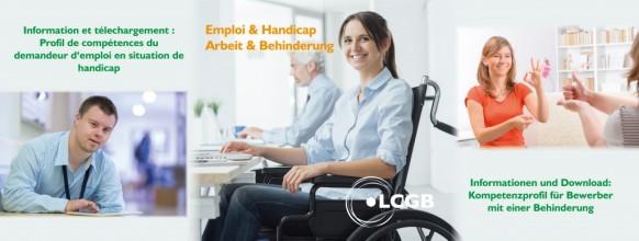 G WB Handicap et Emploi Kompetenzprofil